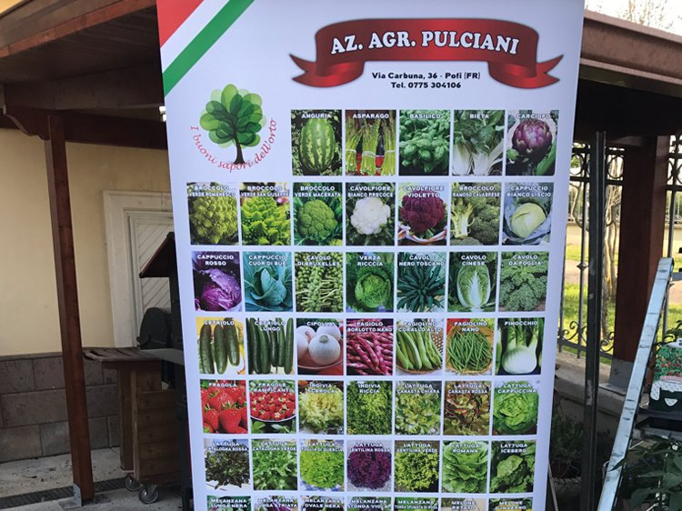 Roll-up Pulciani
